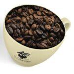 coffee firenze beans